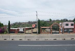 Foto de terreno comercial en venta en ingenio tala , ingenio, tala, jalisco, 3822208 No. 01