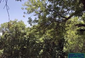 Foto de terreno habitacional en venta en insurgentes sur , tlalpan, tlalpan, df / cdmx, 10994472 No. 01