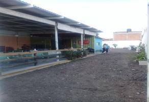 Foto de terreno habitacional en venta en  , irapuato, irapuato, guanajuato, 14612567 No. 01