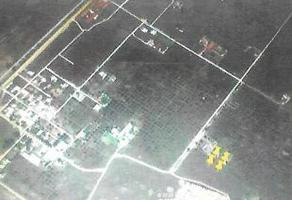 Foto de terreno habitacional en venta en  , irapuato, irapuato, guanajuato, 0 No. 01