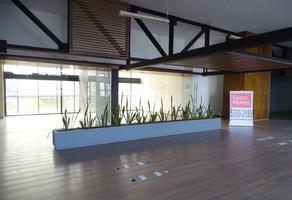 Foto de oficina en renta en  , irrigación, miguel hidalgo, df / cdmx, 10921526 No. 01
