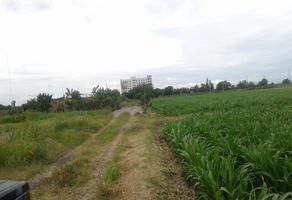 Foto de terreno habitacional en venta en isabel navarro , deportivo, salamanca, guanajuato, 5648672 No. 01