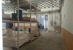 Foto de nave industrial en venta en  , isidro fabela, lerma, méxico, 10184010 No. 01