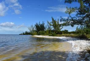 Foto de terreno habitacional en venta en  , isla blanca, isla mujeres, quintana roo, 17410425 No. 01