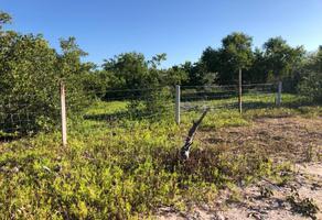 Foto de terreno habitacional en venta en isla de holbox , isla de holbox, lázaro cárdenas, quintana roo, 21322219 No. 01