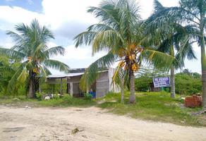 Foto de terreno habitacional en venta en  , isla de holbox, lázaro cárdenas, quintana roo, 0 No. 01