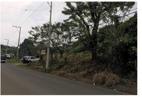 Foto de terreno habitacional en venta en  , isla de juana moza, tuxpan, veracruz de ignacio de la llave, 11643178 No. 01