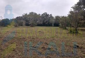 Foto de terreno habitacional en venta en  , isla de juana moza, tuxpan, veracruz de ignacio de la llave, 6443577 No. 01