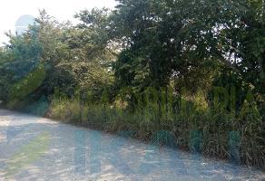 Foto de terreno habitacional en venta en  , isla de juana moza, tuxpan, veracruz de ignacio de la llave, 9501233 No. 01