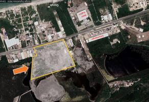 Foto de terreno habitacional en venta en  , isla de tris, carmen, campeche, 14084101 No. 01