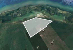 Foto de terreno habitacional en venta en  , isla mujeres centro, isla mujeres, quintana roo, 10935605 No. 01