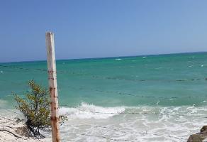Foto de terreno comercial en venta en isla blanca , supermanzana 86, benito juárez, quintana roo, 12359594 No. 01