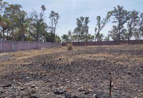 Foto de terreno habitacional en venta en  , islas de cuautla, ayala, morelos, 0 No. 01