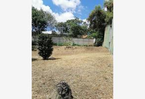Foto de terreno habitacional en venta en isleta 10, isleta, xalapa, veracruz de ignacio de la llave, 0 No. 01