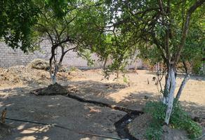 Foto de terreno habitacional en venta en  , itzamatitlán, yautepec, morelos, 0 No. 01