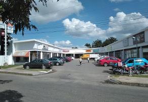 Foto de local en renta en  , itzimna, mérida, yucatán, 11751137 No. 01