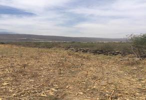 Foto de terreno habitacional en venta en ixtlahuacan de los membrillos , ixtlahuacan de los membrillos, ixtlahuacán de los membrillos, jalisco, 0 No. 01