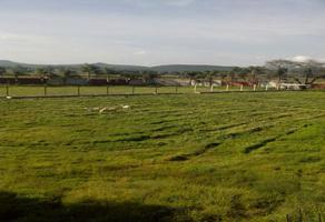 Foto de rancho en venta en  , ixtlahuacan de los membrillos, ixtlahuacán de los membrillos, jalisco, 10595633 No. 01