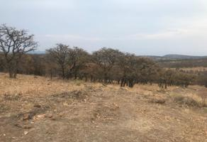 Foto de rancho en venta en  , ixtlahuacan del rio, ixtlahuacán del río, jalisco, 5199590 No. 01