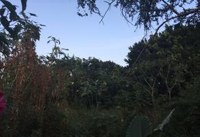 Foto de terreno habitacional en venta en ixtlahuacan , ixtlahuacan, yautepec, morelos, 14526037 No. 01
