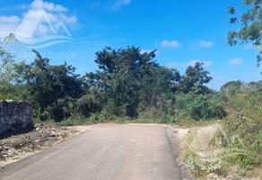 Foto de terreno habitacional en venta en  , izamal, izamal, yucatán, 19133353 No. 01