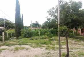 Foto de terreno habitacional en venta en  , iztaccihuatl, cuautla, morelos, 0 No. 01