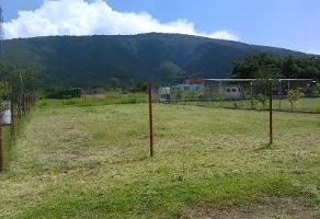 Foto de terreno habitacional en venta en j 1, san jacinto, poncitlán, jalisco, 6643611 No. 01