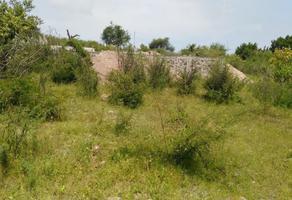 Foto de terreno habitacional en venta en jacarandas , 10 de mayo, tlaltizapán de zapata, morelos, 17847088 No. 01