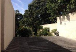 Foto de casa en renta en  , jacarandas, zapopan, jalisco, 6604114 No. 02