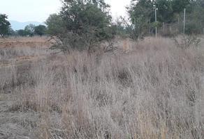 Foto de terreno habitacional en venta en jalpan , estado oaxaca, oaxaca de juárez, oaxaca, 18606006 No. 01