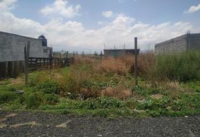 Foto de terreno habitacional en venta en jardín del llano 20, san pablo atlazalpan, chalco, méxico, 0 No. 01