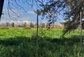 Foto de terreno habitacional en venta en jardin del paraiso , el carmen, tultepec, méxico, 0 No. 01