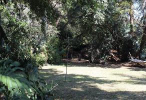 Foto de terreno habitacional en venta en  , jardines de acapatzingo, cuernavaca, morelos, 10774979 No. 01