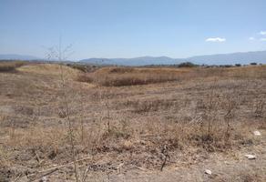Foto de terreno habitacional en venta en  , jardines de cuernavaca, cuernavaca, morelos, 7200049 No. 01