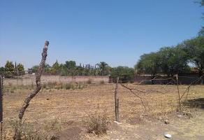 Foto de terreno habitacional en venta en  , jardines de la calera, tlajomulco de zúñiga, jalisco, 0 No. 01
