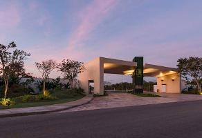 Foto de terreno habitacional en venta en  , jardines de mérida, mérida, yucatán, 0 No. 01