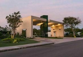 Foto de terreno habitacional en venta en  , jardines de mérida, mérida, yucatán, 20945236 No. 01