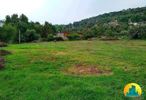 Foto de terreno habitacional en venta en  , jardines de san miguel, tepeji del río de ocampo, hidalgo, 0 No. 01