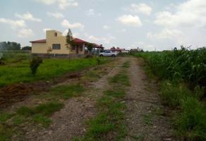 Foto de terreno habitacional en venta en  , jardines de santa maria, arandas, jalisco, 3891920 No. 04