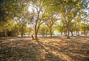 Foto de terreno habitacional en venta en  , jardines de santiago, santiago, nuevo león, 13692267 No. 01