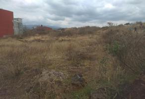 Foto de terreno habitacional en venta en  , jardines de tlayacapan, tlayacapan, morelos, 0 No. 01