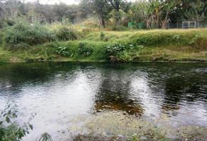 Foto de terreno comercial en venta en  , jardines de xochitepec, xochitepec, morelos, 15784292 No. 01