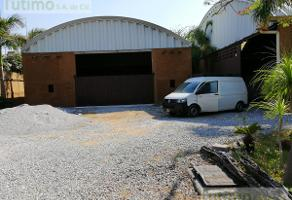 Foto de local en renta en  , jardines de xochitepec, xochitepec, morelos, 7261581 No. 01