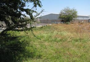 Foto de terreno comercial en renta en  , jardines de xochitepec, xochitepec, morelos, 9788905 No. 01