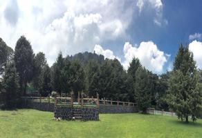 Foto de rancho en venta en  , jardines del ajusco, tlalpan, df / cdmx, 18579405 No. 01
