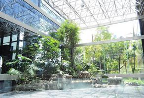 Foto de local en renta en  , jardines del pedregal, álvaro obregón, df / cdmx, 17057122 No. 02