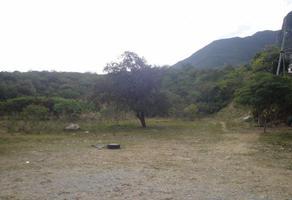 Foto de terreno habitacional en venta en  , jardines guadalupe, guadalupe, nuevo león, 12446969 No. 01