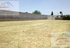 Foto de terreno habitacional en renta en  , jardines guadalupe, guadalupe, nuevo león, 15542538 No. 01