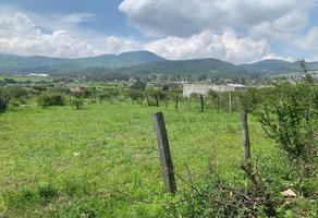 Foto de terreno habitacional en venta en  , jaripeo, charo, michoacán de ocampo, 19101689 No. 01