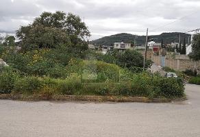 Foto de terreno habitacional en venta en jazmín , san miguel tlaixpan, texcoco, méxico, 0 No. 01